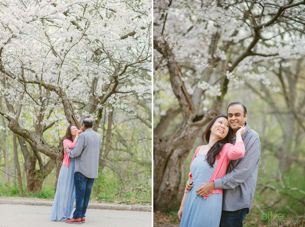 High Park Cherry Blossom Engagement - Olive Photography Toronto