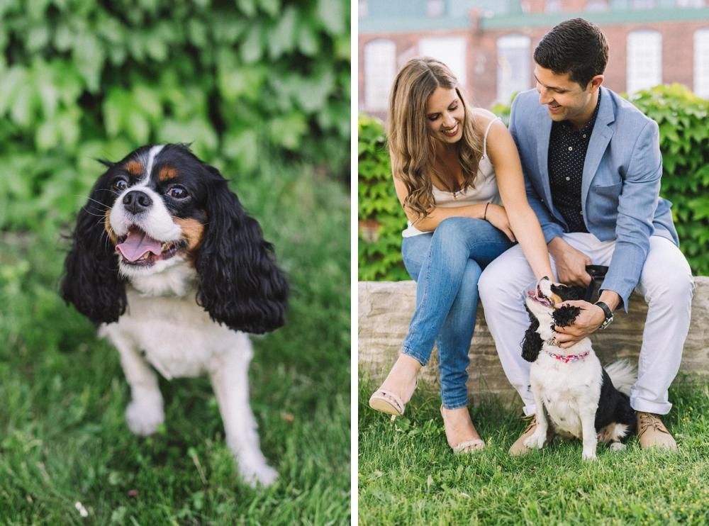 engagement photos with dog - Olive Photography Toronto