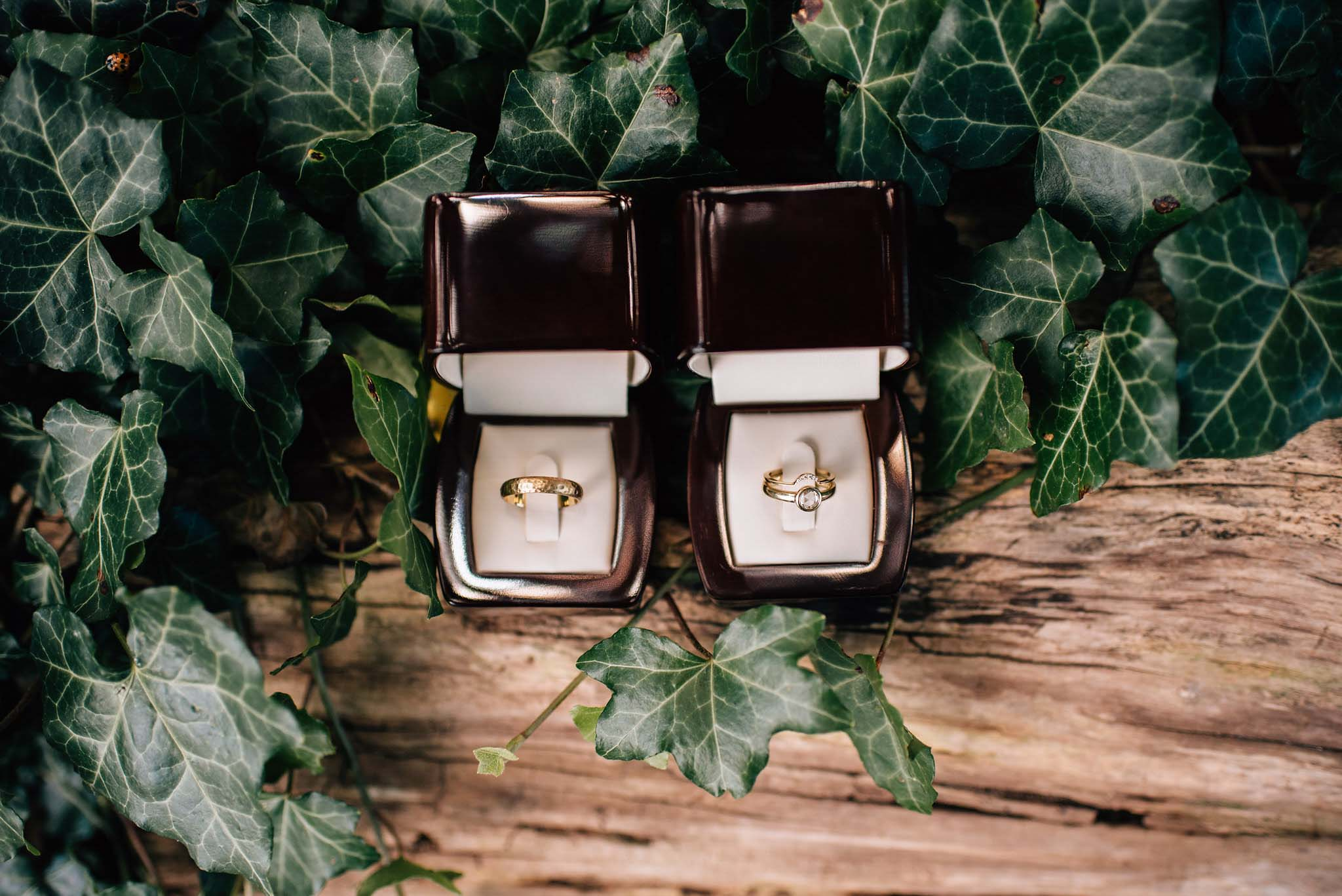 Gold wedding bands | Olive Photography Toronto